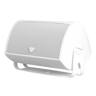 Definitive Technology AW6500 White Loudspeaker