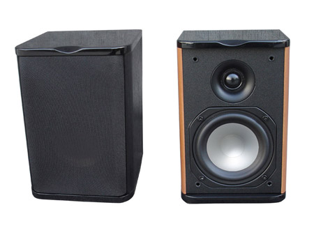 Premier Acoustic PA-4.0 Monitors